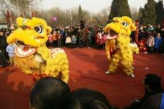 Danza del león Foto de archivo libre de regalías