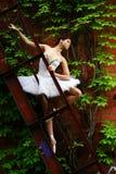 Danza hermosa del ballet del baile de la bailarina Foto de archivo