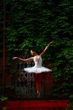 Danza hermosa del ballet del baile de la bailarina Fotos de archivo libres de regalías