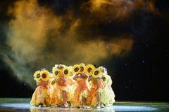 Danza popolare del cittadino della ragazza- del girasole Fotografia Stock