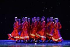 Danza popolare del ragazza-tibetano del pastore Immagine Stock
