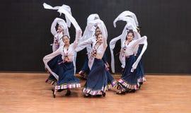 Danza tibetana de Guozhuang 20-Chinese - ensayo de la enseñanza en el nivel del departamento de la danza foto de archivo