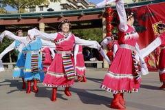 Danza tibetana de la danza de la gente Foto de archivo libre de regalías