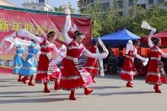 Danza tibetana de la danza de la mujer Fotos de archivo libres de regalías