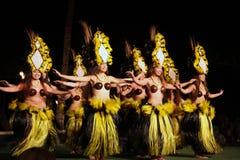 Danzatore anziano di Lahaina Luau - dell'Hawai Fotografie Stock Libere da Diritti