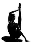 Danzatore di balletto della donna Immagine Stock