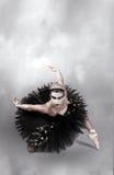 Danzatore di balletto nero del cigno Immagini Stock