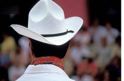 Danzatore messicano Immagini Stock