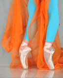 Danzatore nel pointe di balletto Fotografia Stock