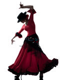 Danzatore zingaresco di dancing di flamenco della donna Immagine Stock