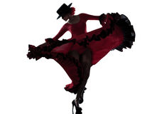 Danzatore zingaresco di dancing di flamenco della donna Immagini Stock