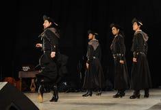 Danzatori di Malambo Fotografia Stock
