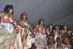 Danzatori tradizionali Fotografia Stock Libera da Diritti