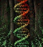 Daño de la DNA Fotografía de archivo