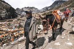 Unidentified woman and horse in Yading national reserve. DAOCHENG, SICHUAN , CHINA - OCTOBER 14, 2017 : Unidentified woman and horse in Yading national reserve royalty free stock images
