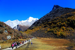 Daocheng Yading, ein Naturreservat der nationalen Ebene in China stockfotografie