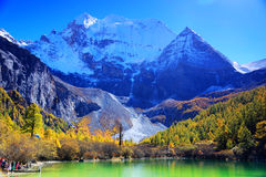 Daocheng Yading , a national level nature reserve in China. Daocheng Yading , a national level nature reserve area, located in the southwest of Sichuan Province stock images