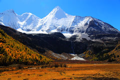 Daocheng Yading , a national level nature reserve in China. Daocheng Yading , a national level nature reserve area,  located   in the southwest of Sichuan Stock Photos
