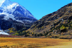 Daocheng Yading , a national level nature reserve in China Stock Photography