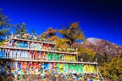 Daocheng Yading, una riserva naturale di livello nazionale in Cina Fotografia Stock Libera da Diritti