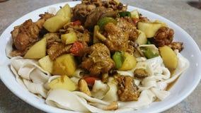 Dapanji - Braised Chicken with Potato and Green Pepper Stock Image