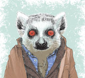 Dapper Lemur illustration Stock Photo