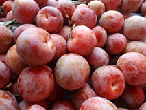 Dapple Dandy Pluot Royalty Free Stock Photography