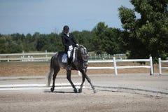 Dapple den gråa Dressagehästen och ryttaren på en show Royaltyfria Bilder