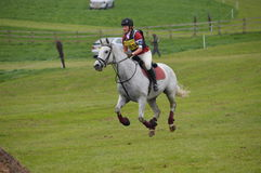 Dapple Grey horse doing cross country. Dapple grey horse at a local horse show Stock Photography