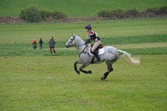 Dapple Grey horse doing cross country Stock Photography
