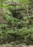 Dappled sunlight in the ravine. At Rivington Terraced Gardens, Near Horwich, England Royalty Free Stock Image