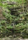 Dappled sunlight in the ravine Royalty Free Stock Image