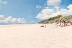 Darß del oeste de la playa que pasa por alto el mar Imágenes de archivo libres de regalías