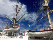 Dar Pomorza Tall Ship in Gdynia port royalty free stock image