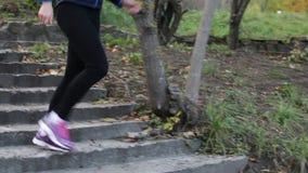 dar uma corrida no parque do outono vídeos de arquivo