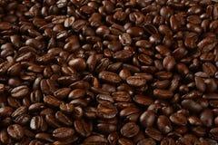 Darak coffee bean background Stock Photos