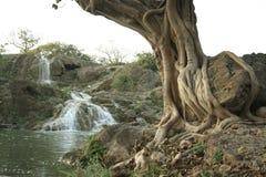 Darbat falls   Royalty Free Stock Photos