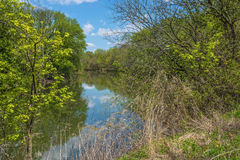 Darby Creek. A Spring view of Darby Creek in Tinicum Township in Easter Pennsylvania Royalty Free Stock Photography