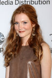 Darby Stanchfield arrives at the ABC / Disney International Upfronts Royalty Free Stock Image