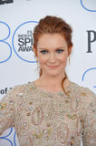 Darby Stanchfield Royalty Free Stock Image