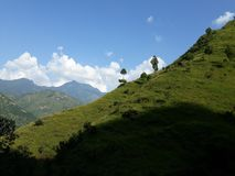 Western Nepal Greenery stock image