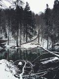 Darck水 免版税图库摄影