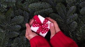 Dare del regalo di Natale stock footage