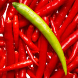 Dare to be different. Green chili on a pile of red chilies Royalty Free Stock Image