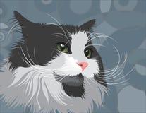 Dargestellte Katze Stockfotos