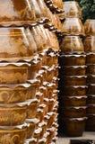 Dargon植物许多设置了 免版税库存照片