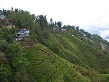 Darjeeling INDIEN, 15th APRIL 2011: Flyg- sikt från cablen Arkivbilder