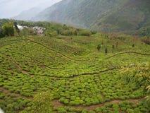 Darjeeling, la INDIA, el 15 de abril de 2011: Visión aérea desde el cabl Foto de archivo libre de regalías