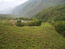 Darjeeling, la INDIA, el 15 de abril de 2011: Visión aérea desde el cabl Foto de archivo