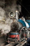 The Darjeeling Toy Train Royalty Free Stock Photo